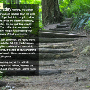 Multimedia storytelling: Tacoma's gulches