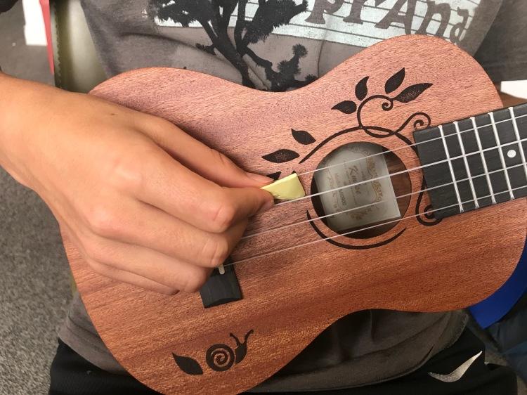 ukulele pick